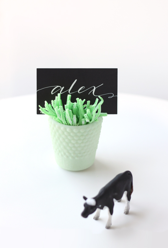 edible grass place card holder
