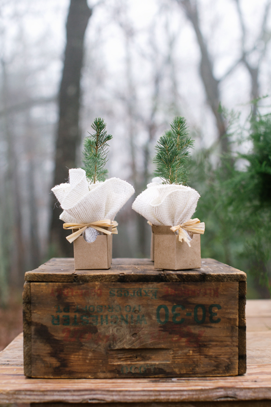 tree sapling favor in minted kraft favor box