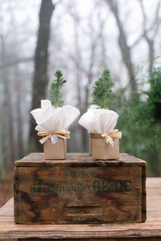 tree sapling favor in minted kraft favor box