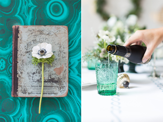anemone, vintage flower book and green glasses
