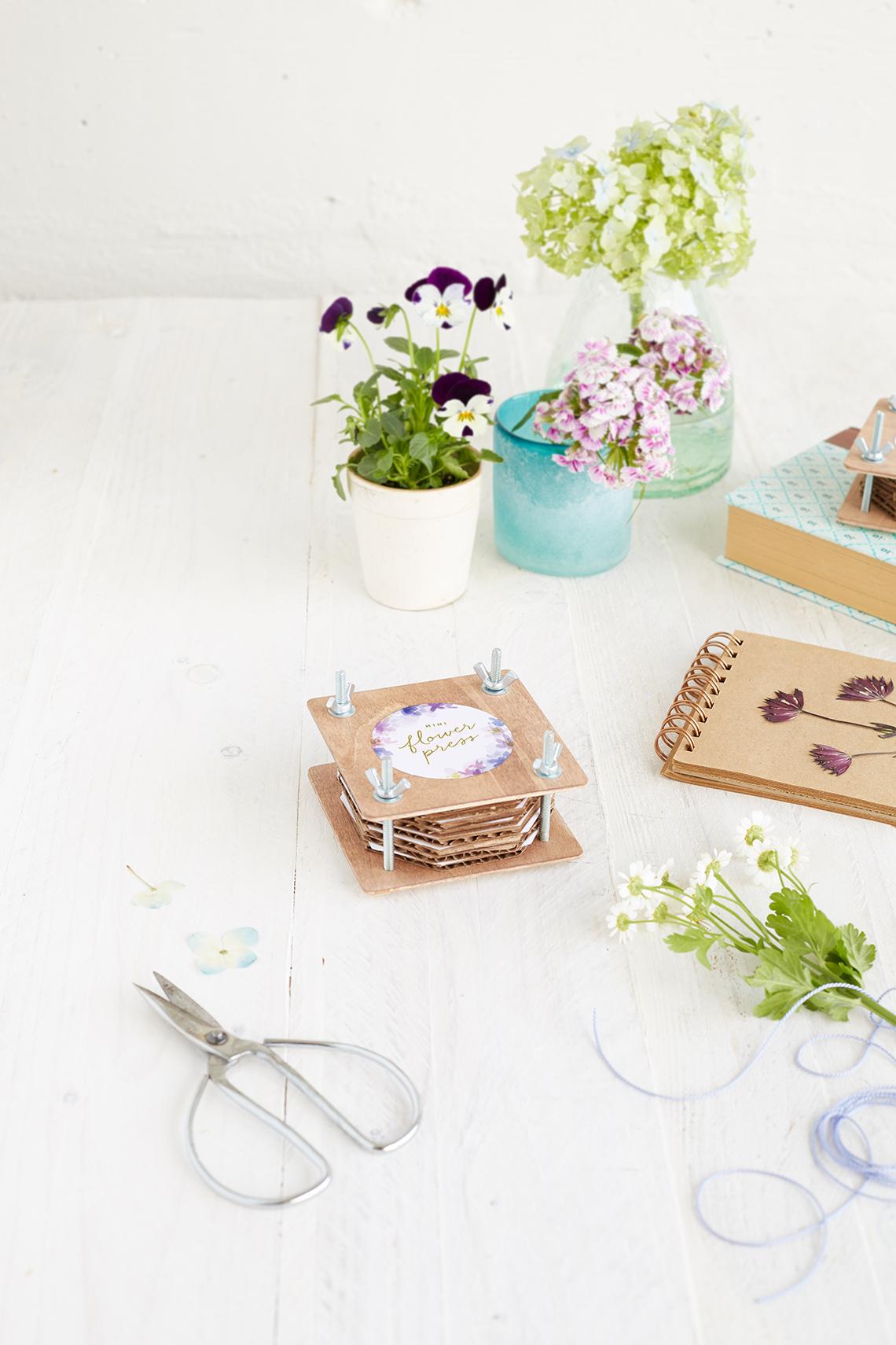 Diy Mini Flower Press Julep