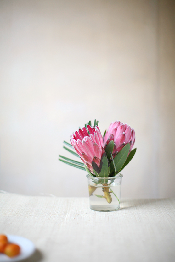 protea flowers for minted jungle baby shower