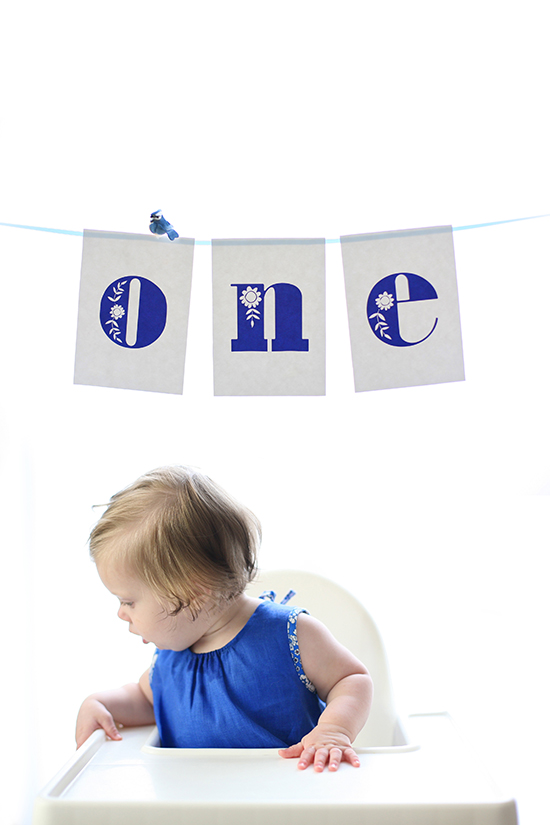 blue bird first birthday for minted by kelli hall
