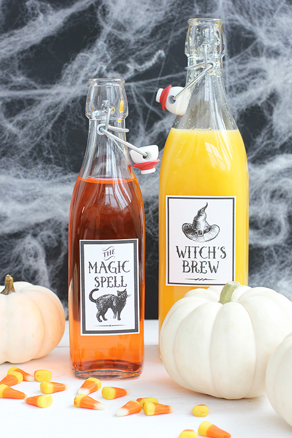 Halloween Potions Free Printable | alice & lois for minted