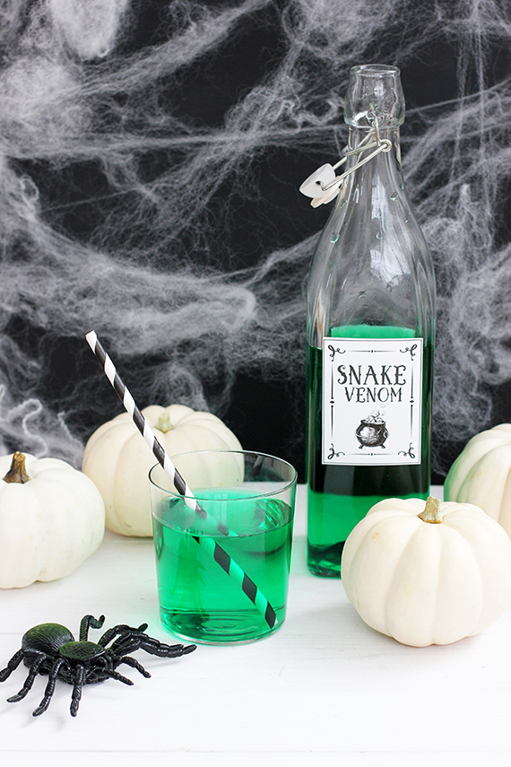 Halloween Potion Free Printable | alice & lois for minted
