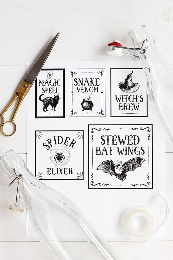 Halloween Potion Free Printable   alice & lois for minted