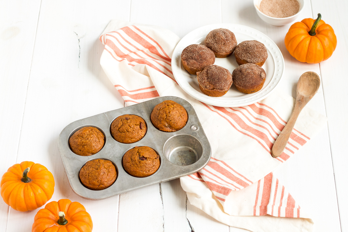 A classic pumpkin chocolate chip muffin recipe