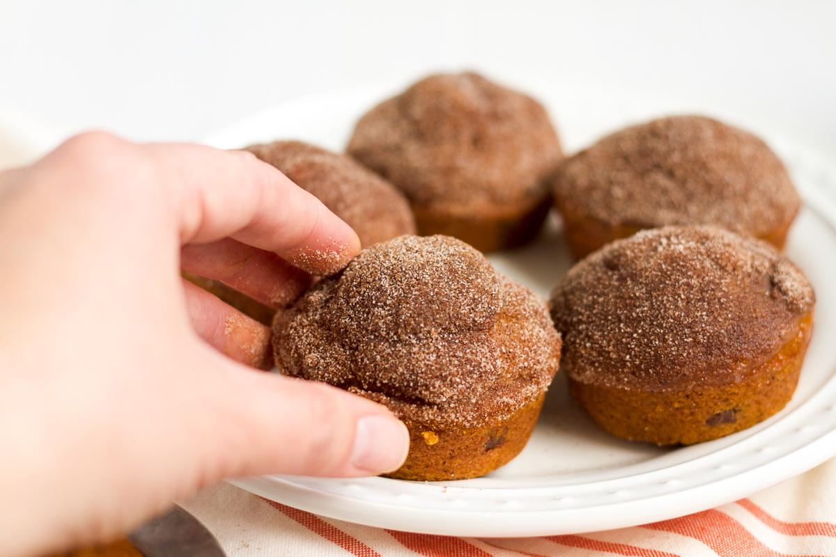 Recipe: Pumpkin Chocolate-Chip Muffins   Julep